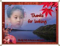 Thanks for Looking Japanese Style