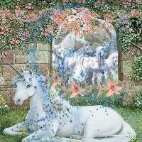 Fantasy World of Unicorns