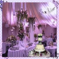 My Dream: 50th Wedding Anniversary Reception