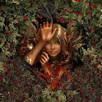 Fantasy in the Rose Garden !