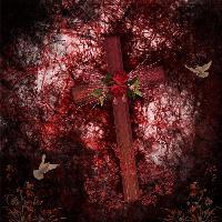 My Cross !