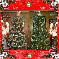 My Christmas Trees