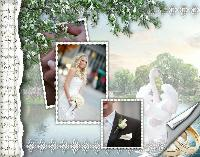 Shabby chic wedding 1.....