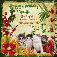 Happy Birthday Neeltje