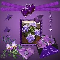 February: Amethyst & Violet
