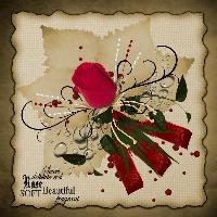 A Rose....