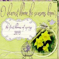 Springs first blooms
