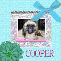 Sweet Cooper