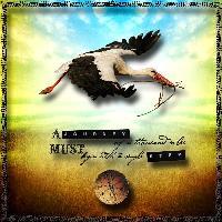 ~The Stork Journey~