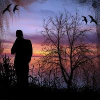 Silhouette in Sunset