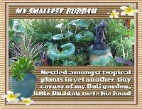 MY SMALLEST BUDDAH