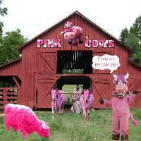 pink cow farm