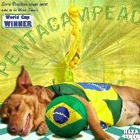 Brazil Hexa 2010!!