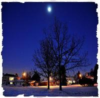 Cold Dark Night In December