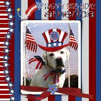 happy 4th from cooper