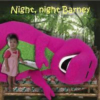 Night, Night Barney