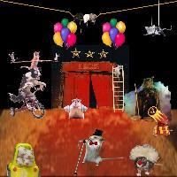 Circus of the Mice