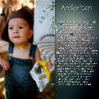Introducing Anderson