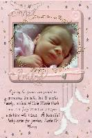 Evie's Birth Announcement