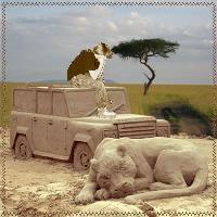 Gabriel on Safari