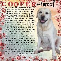 Introducing cooper