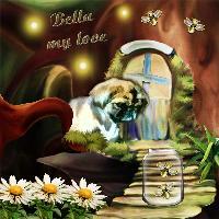 In Loving Memory of Bella
