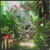 Garden for Fairies.