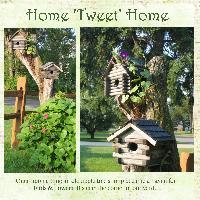 Home 'Tweet' Home