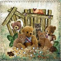 teddy and kittens