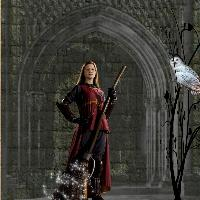 ginny 2nd challenge page