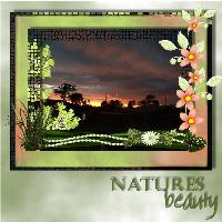 natures beauty