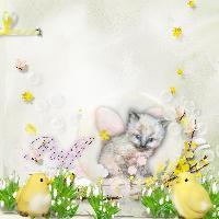 Fairy Puff