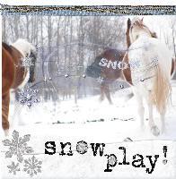 Snow Play Horses