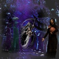 Dark forest gathering