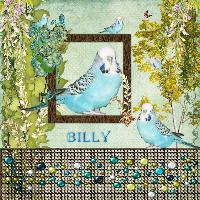 billy pritty clever boy