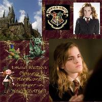 Harry's Best Friend~ Hermione