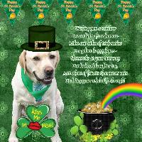 St. Patrick's Day Page with cooper