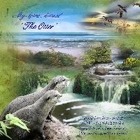 My Spirit Animal - The Otter