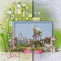 Spring Fever...Lambs