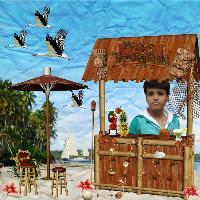 Dravish Tropical Island