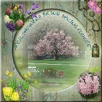 April Showers Bring Spring Flowers