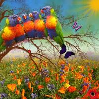 burst of Colour in Our world