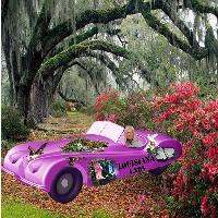 Louisiana Lady Car
