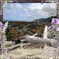 Owhiro Bay, Red Rocks, Wellington