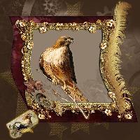Spirit of the Hawk 2