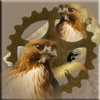 Hawk in Steampunk fairyland