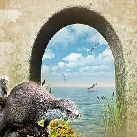 Spirit of Otter
