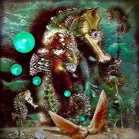 Sea Horse..fantasy