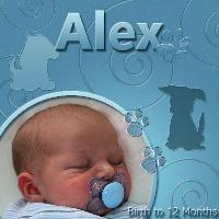 Alex Birth to 12 Month Album Cover