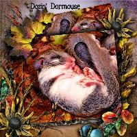 Dozin' Dormouse